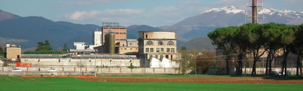 NextSniaViscosa, chiusa la call internazionale. In 175 si candidano per venire a Rieti.